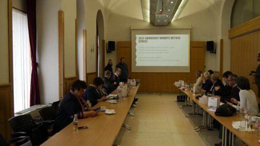 Nemzetközi találkozót tartottunk a választójogról